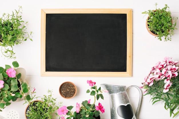 緑の植物と黒板のレイアウト