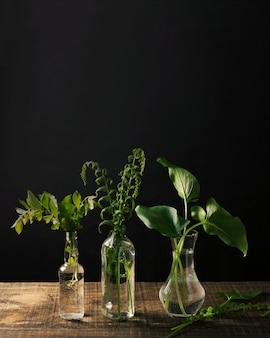 植物と花瓶のエレガントなアレンジメント