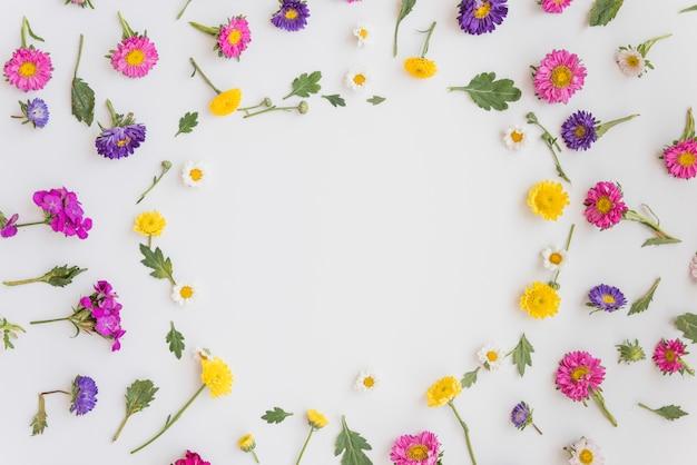 色とりどりの花のコレクション