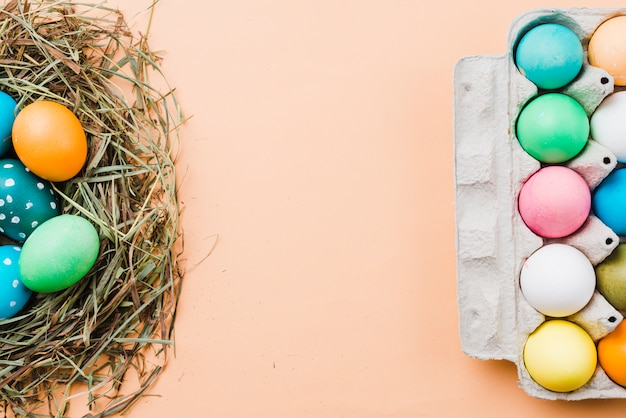 巣とパックで明るいイースターエッグのセット