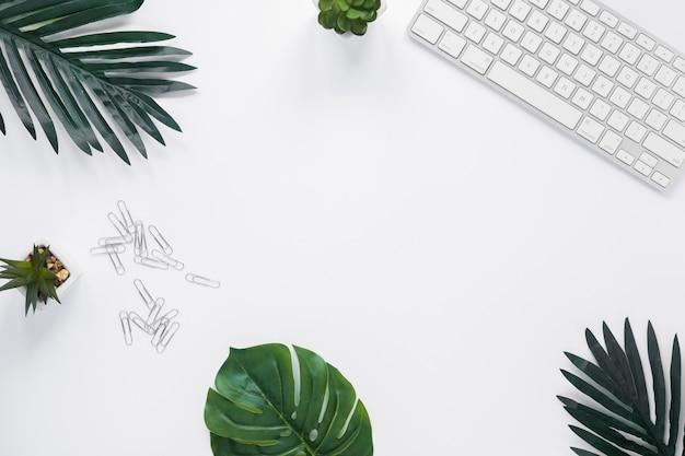 キーボード;サボテンの植物。テキストを書くためのコピースペースと白い机の上の葉とペーパークリップ