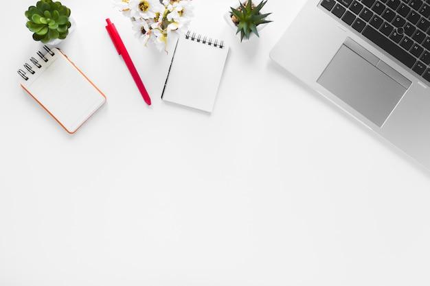 スパイラルメモ帳と赤ペン。白い背景の上のノートパソコンとサボテンの植木鉢