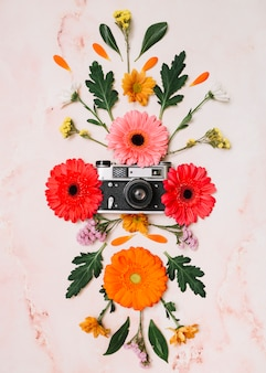 大理石のテーブルの上のカメラと花芽