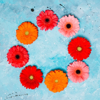 Круглая рамка из цветов герберы на столе