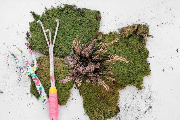 白い背景の上の芝生とガーデニングツール