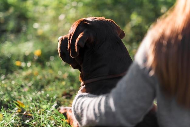 公園で彼のペットの飼い主と犬のクローズアップ