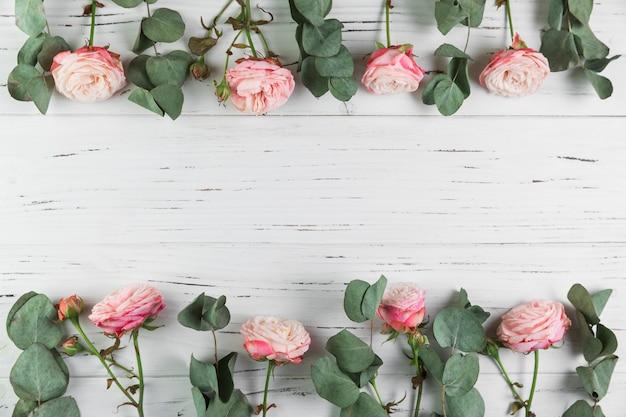ピンクのバラと白い木製の背景上の葉で作られた国境