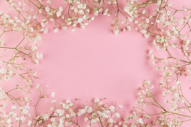 ピンクの背景に対して新鮮な白い石膏花とテキストを書くための空白