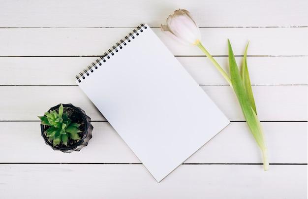 サボテンの植物。スパイラルメモ帳と木製の机の上のチューリップ