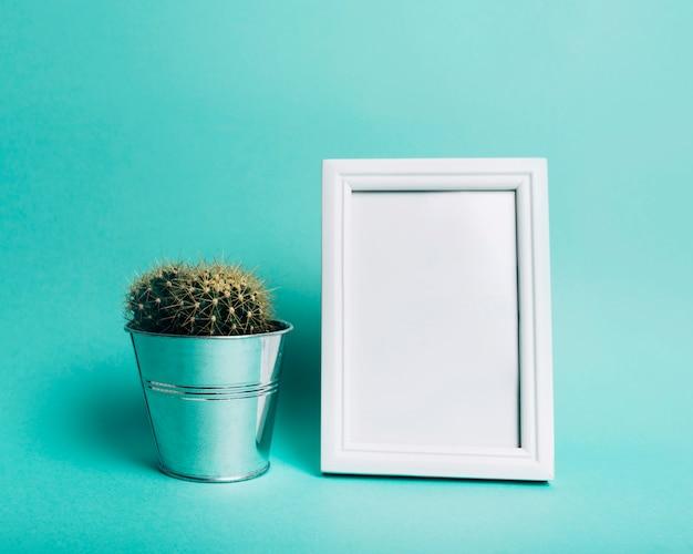 ターコイズブルーの背景に対して空白の白い枠の近くのスパイクサボテンの植物