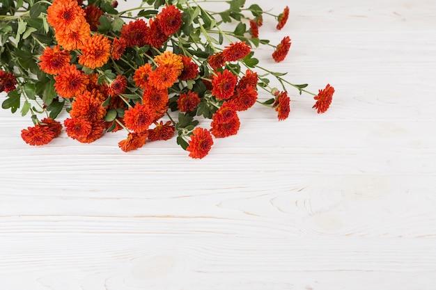 Красные цветы разбросаны на белом столе