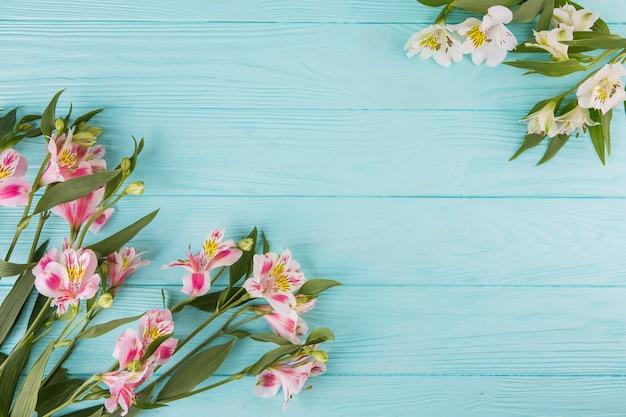 ピンクの花が青いテーブルの上に散らばって
