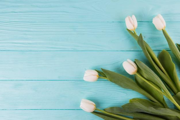 木製のテーブルの上の白いチューリップの花