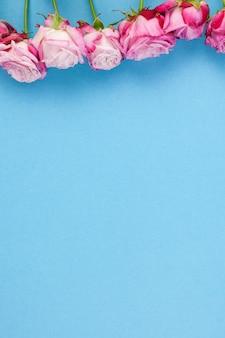Композиция из розовых цветов на синем фоне