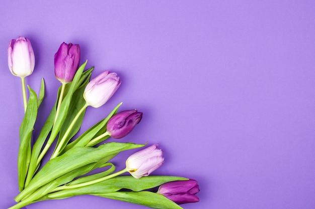 紫色の表面に美しいチューリップの花の束