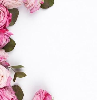 平らな面に繊細なピンクのバラ