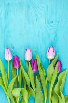 ターコイズ色のテーブルの上の新鮮な春のチューリップの平面図