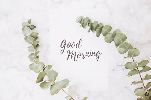 Сухие ветки эвкалипта на доброе утро от руки на белой бумаге на текстурированном фоне