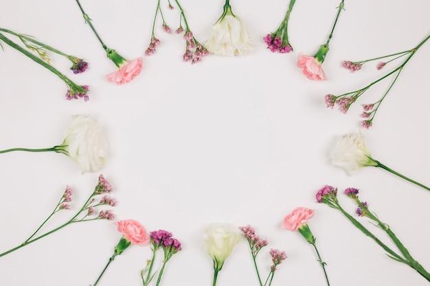 白い背景にテキストを書くための中心のスペースを持つ円形のカーネーションの花フレーム