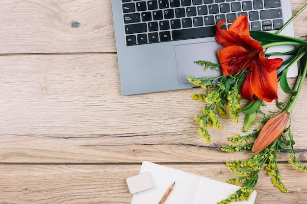 Вид сверху на ноутбук; ластик; карандаш; бумага; золотарники или солидаго гигантские и лилии цветы на деревянный стол