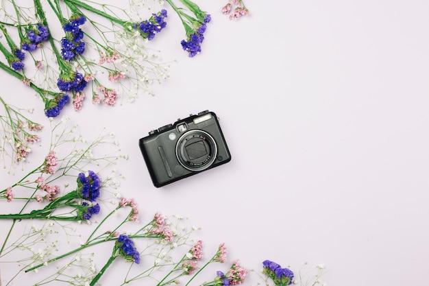 Вид сверху на фиолетовый и розовый лимоний; гипсофила цветы с камерой на белом фоне
