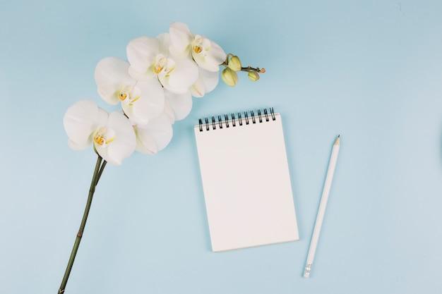 白い蘭の花の枝。スパイラルメモ帳と青の背景に鉛筆