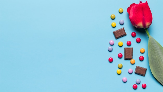 宝石キャンディーと青い背景にテキストを書くためのスペースとチョコレートの部分と赤いチューリップの花のクローズアップ