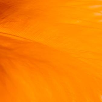 羽の多くの抽象的なオレンジ色の繊維