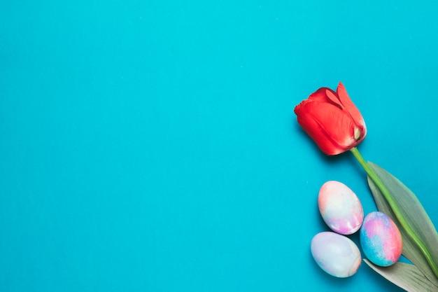 青い背景の隅に色とりどりのイースターエッグと赤いチューリップ