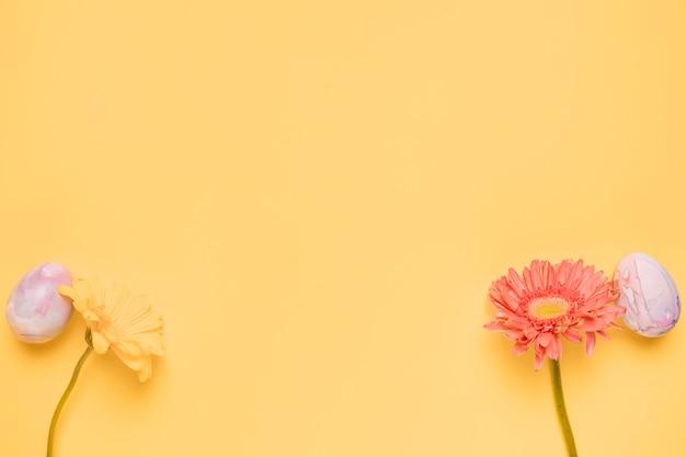 ガーベラの花とテキストを書くためのコピースペースを持つ黄色の背景の角に卵