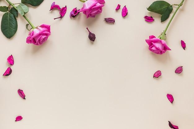 テーブルの上の花びらとピンクのバラの花