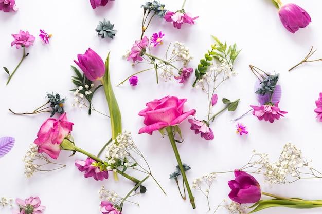 Разные цветы разбросаны по светлому столу