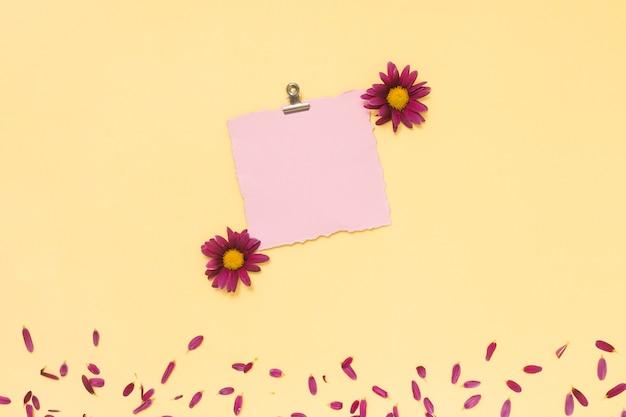 白紙の花と花びら