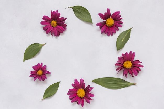 花とテーブルの上の葉からフレーム