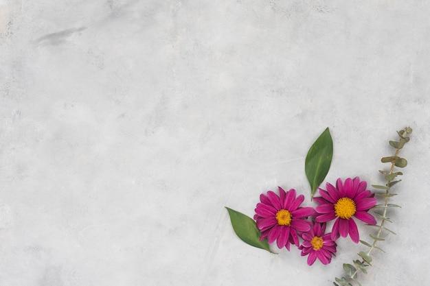 灰色のテーブルの上の葉とピンクの花