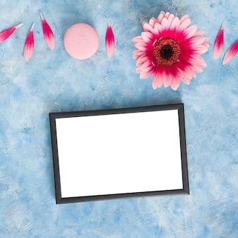 Цветок герберы с лепестками и пустой рамкой