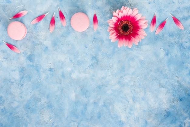 Цветок герберы с лепестками и миндальное печенье