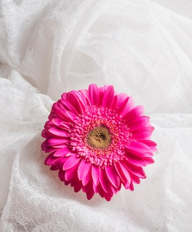 白いテキスタイルの間の美しい新鮮な明るいピンクの花