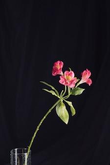 花瓶に新鮮なピンクの花