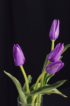Ароматические фиолетовые цветы с зелеными листьями в росе в вазе