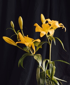 Букет из желтых цветов в темноте