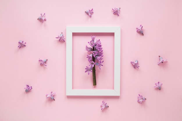 テーブルの上のフレームに紫の花枝