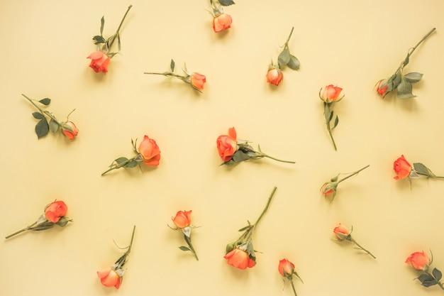 バラの花がベージュのテーブルの上に散らばって