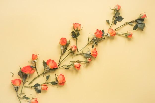 ベージュのテーブルの上に散らばって小さなバラの花