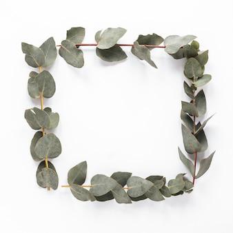 テーブルの上の植物の枝からフレーム