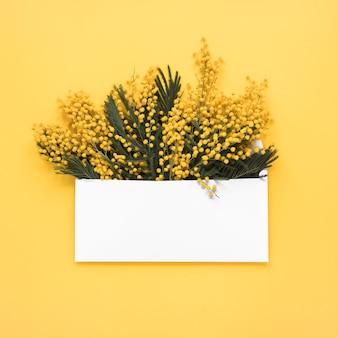 封筒の黄色い花の枝