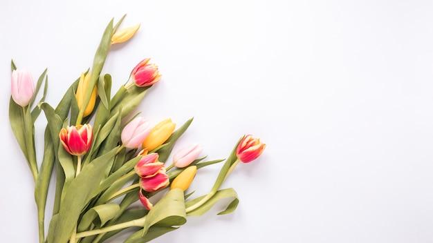 白いテーブルの上の明るいチューリップの花