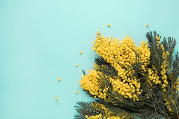 黄色の花の枝が青いテーブルに散在