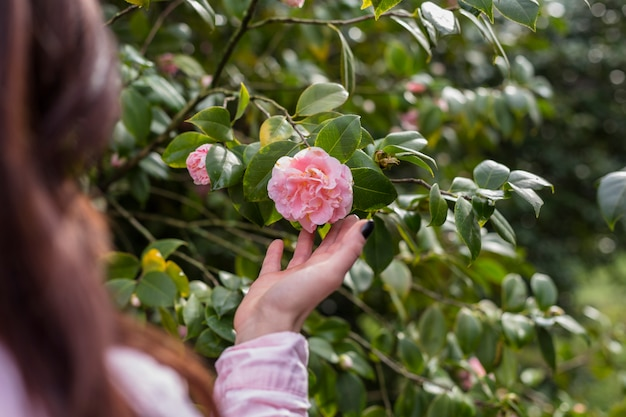 緑の小枝に成長しているピンクの花を持つ女性