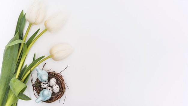 ウズラの卵の巣の中のチューリップ